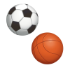 Section Sportive Foot Basket
