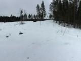 Randonnée dans la neige